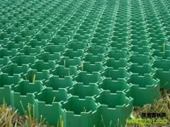 植草格-- 园林帮管理中心