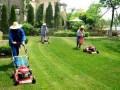 公共绿地色块、花坛月度养护要点