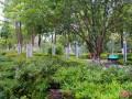 小区园林绿化管理规定