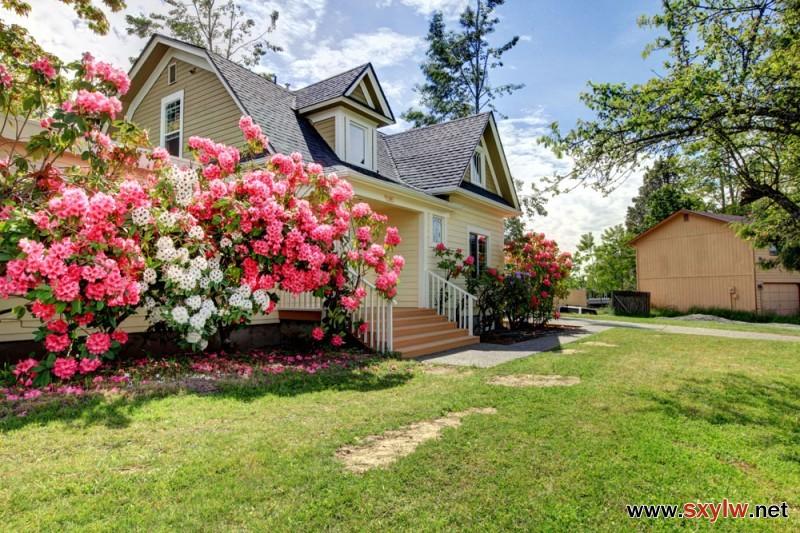 不同的季节该如何养护您的花园