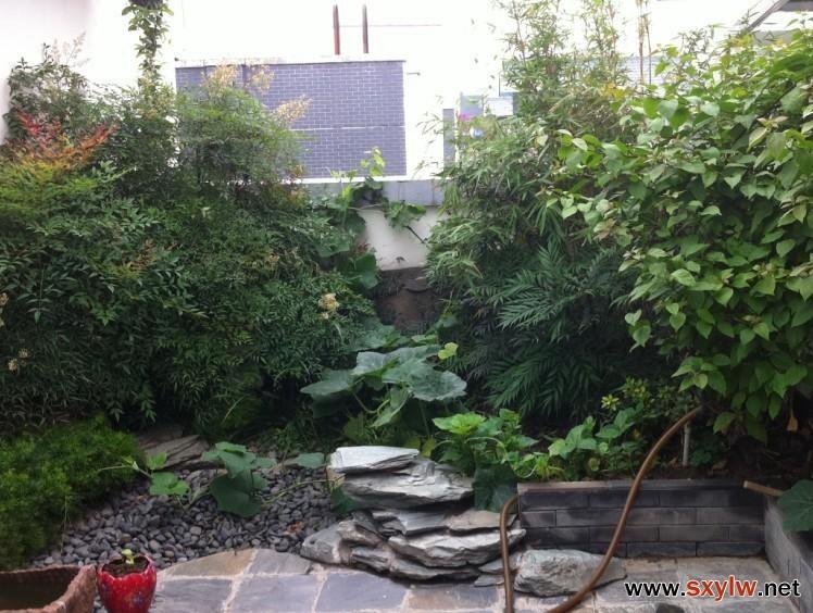 西安屋顶花园设计公司-- 园林林管理员