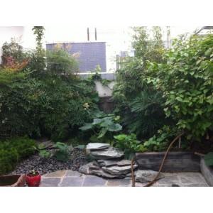 西安屋顶花园设计公司