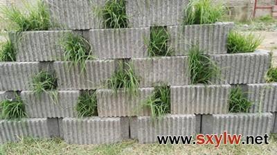 植草挡土墙