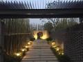 第十届中国(武汉)园博会滁州园 (9)