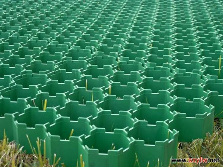 塑料植草格-- 园林编辑