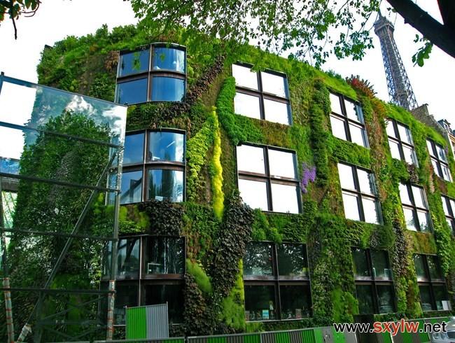 城市中的自然气息——独具魅力的垂直花园