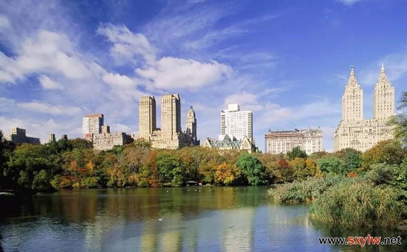如何在一流国际大都市中进行绿化规划