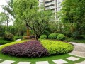 浅析城市开放公园植物造景