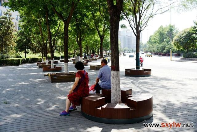 西安市树池、长椅和坐凳的创意结合 美观大方舒适实用