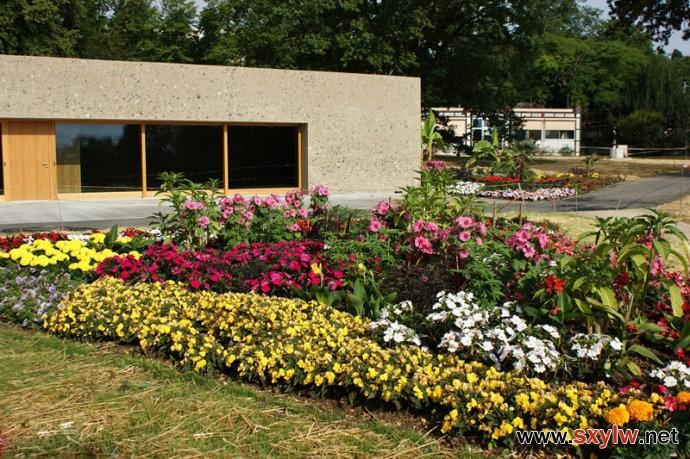 园林绿化如何做到植物与建筑物的相互搭配