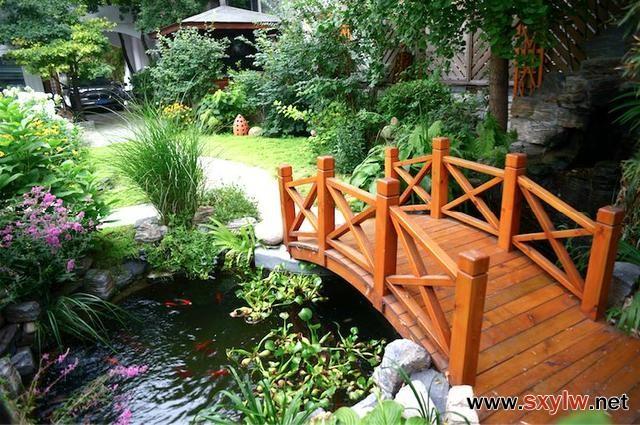 花园留一方小池塘,让院子清澈透凉