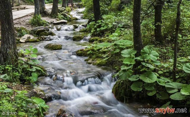 河道景观的亲水设施和绿化设计
