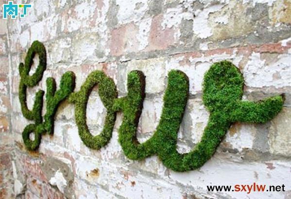 苔藓墙壁涂鸦如何手工创作