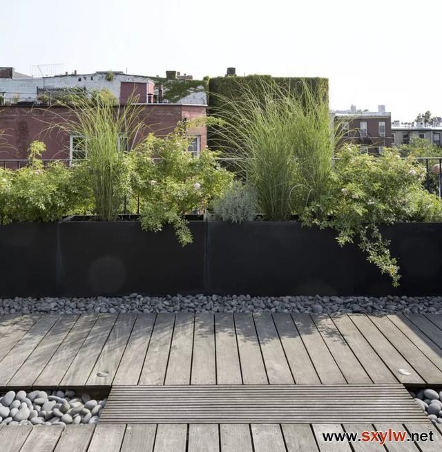 如何打造低维护的屋顶花园/露台花园
