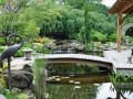 花园景观,木质栈桥,本身就是一道靓丽的景观