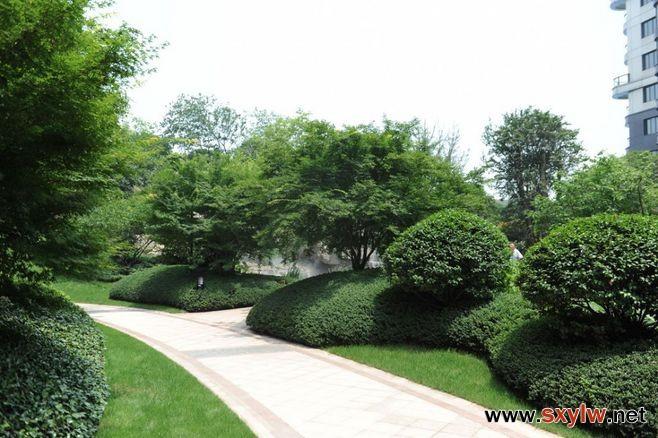 庭院花园建设的前期思想准备
